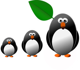 Penguin and family isolated on the white background