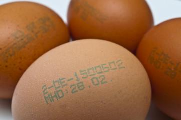 Erzeugungscode auf Hühnerei