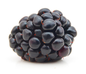 Ripe blackberry isolated on a white background