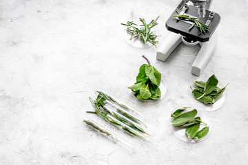 Analysing food concept. Healthy products. Herbs rosemary, mint under microscope on grey background top view space for text