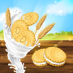 Vector realistic colorful background, promotion banner with cookies, crispy crackers with milky splash and wheat ears, stack of biscuits on wooden table. Sweet, natural dessert for healthy breakfast