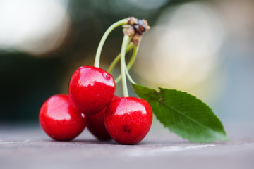 Red cherries berry close-up. Ripe fruit macro view photo. Selective focus, shallow depth of field. Beautiful bokeh background