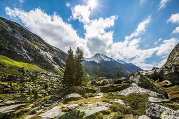 Österreich, Salzburg, Zell am See, Wandern im Nationalpark Hohe Tauern auf 2000m
