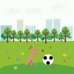 A dog plays with a ball in a city park
