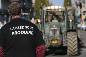 Farmers demonstrate with tractors in Nantes as part of a national day of protest against environmental restrictions and weak market conditions marked by a Russian food embargo