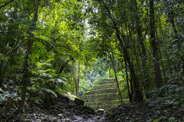 Mexico. The Yaxchilan Archaeological Park - entrance to the ancient city hidden in the Lacandon Jungle
