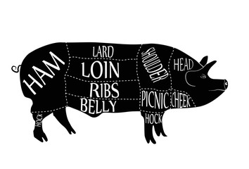 American cuts of pork, butcher cuts scheme