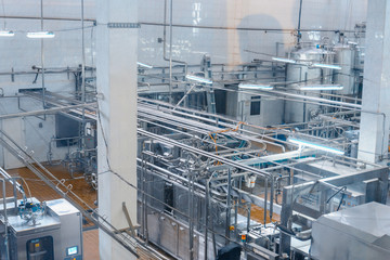 milk and cheese production plant