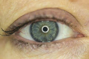 Macro picture of blue eye