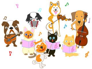 猫と犬のコンサート