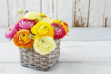 Bouquet of colorful ranunculus flowers.