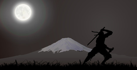 Japanese assassin, Ninja, Fujiyama