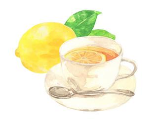 レモンティー 水彩