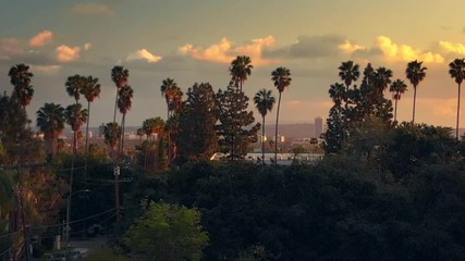 Fotobehang - Aerial view, descending near Hollywood Boulevard with palm trees, city of Los Angeles cityscape and epic sunset sky in background. 4K UHD.