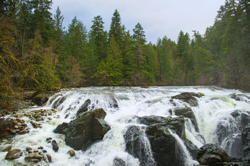 View of the Englishman River Falls in Vancouver Island, BC Canada