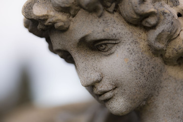 Stylized Image of the Side View of a Serene Statuary Face, Against Out of Focus Background