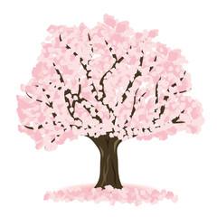 桜の木 イラスト素材