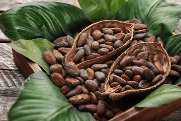Halves of cocoa pod with beans in crate on table