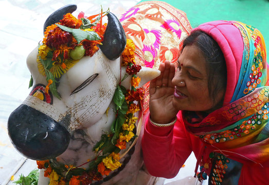 A Hindu woman whispers her wishes in the ear of Nandi (mount of Lord Shiva) inside a temple during the Maha Shivratri festival in Chandigarh