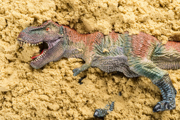 tyrannsaurus on sand concept of animal excavating