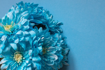 Set of blue and white flowers in a chrysanthemum pattern in a background frame, a concept of a Valentine's day holiday and spring