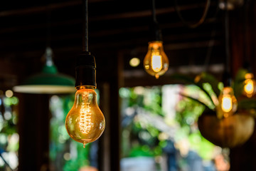 Incandescent lamps in wooden room. Edison lamp.
