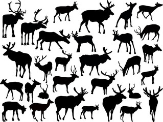 thirty deer silhouettes on white