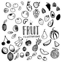 Fruit Illustration Pack