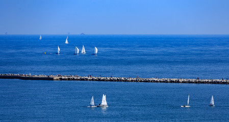 Sailboats Around Seawall