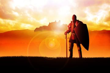 A knight standing on grass field