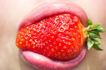 Summer, fruit, berry, harvest season