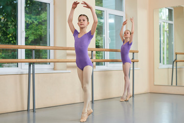 Two young ballerinas in ballet position. Graceful ballerina in purple leotard standing in ballet pose. Tender young ballet dancer.