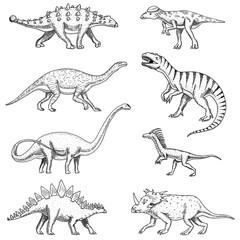 Dinosaurs set, triceratops, barosaurus, tyrannosaurus rex, stegosaurus, pachycephalosaurus, diplodocus, deinonychus, velociraptor, skeletons, fossils. Prehistoric reptiles, Animal Hand drawn vector.