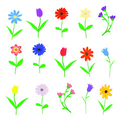 Hand drawn Spring flowers set isolated on white background vector illustration
