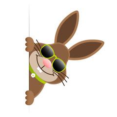 Single Easter Bunny Sunglasses Banner Green