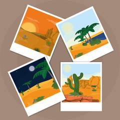 Pictures of the desert over cork board