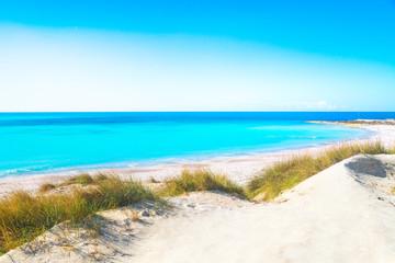 Rosignano Solvay Vada Castiglioncello, white sand beach and coast. Tuscany, Italy