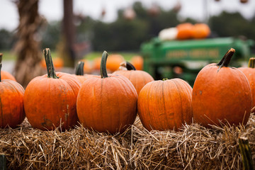 Pumpkins and Tractor in Autumn