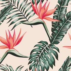 Oiseau de paradis laisse modèle sans couture tropical de couleur verte