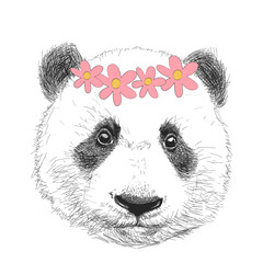 Funny panda in a flower wreath. Vector