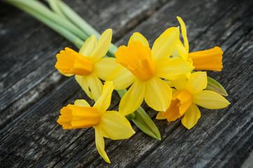 bouquet de narcisses coupées sur une table en bois