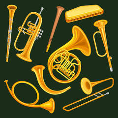 Set of woodwind and brass musical instruments. Clarinet, trumpet, harmonica, wooden pipe sopilka , french horn, hunting horns, trompette, trombone. Flat vector design