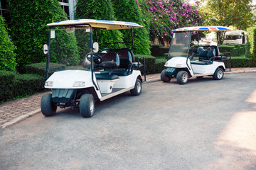 Golf car ready service in the garden