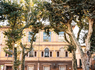 Beautiful architecture of a building behind trees