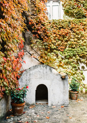 Building covered with leaves in Ravello, Italy
