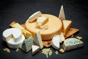 Various types of cheese - parmesan, brie, roquefort, cheddar