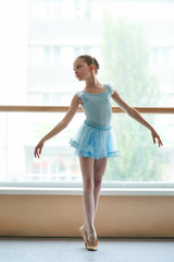 Young charming ballerina in ballet studio. Beautiful little ballet dancer standing in dance position in ballet class.