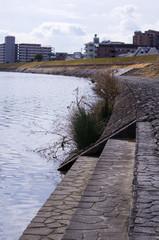 日本の川岸の風景
