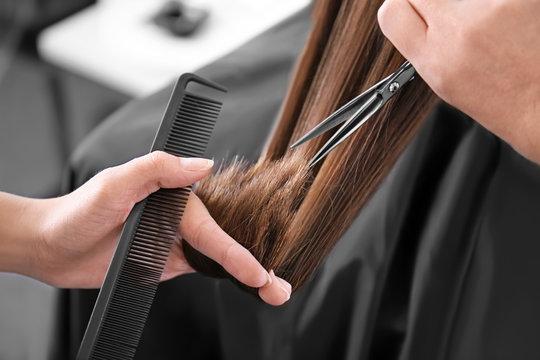 Professional stylist cutting woman's hair in salon, closeup