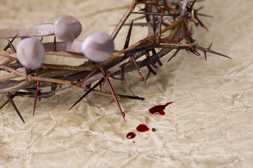 Crown of Thorns with nails and blood